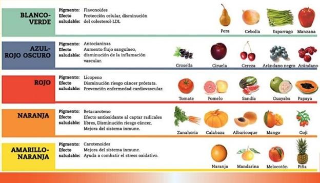 componentes bioactivos presentes en frutas y hortalizas luisa solano